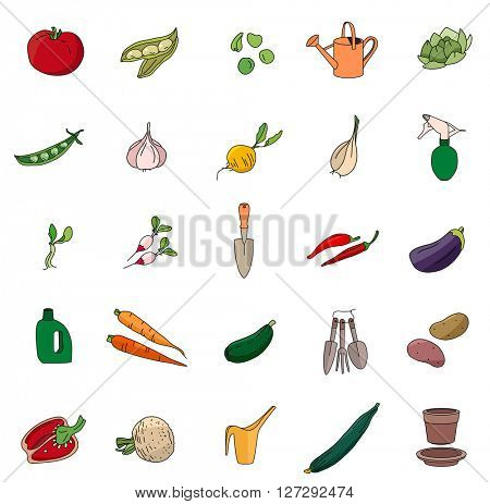 Gardening tools for plants isolated on white. Stylized vegetables and herbs. Objects for your design, advertisement, posters.