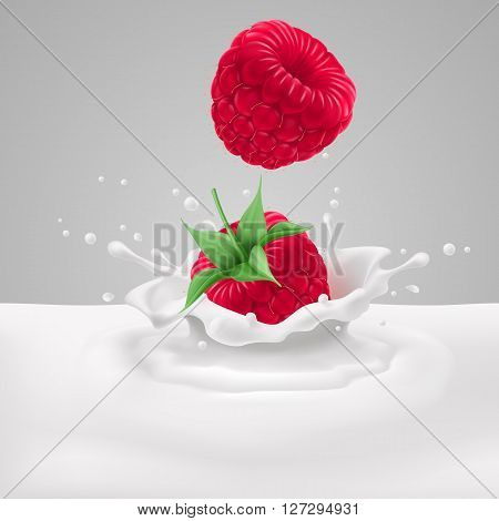 Appetizing raspberries falling into milk with splashes