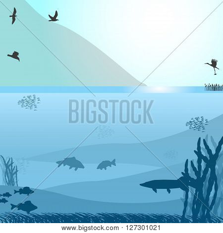 Vector illustration of a lake with fish and birds near the mountain. Blue background.