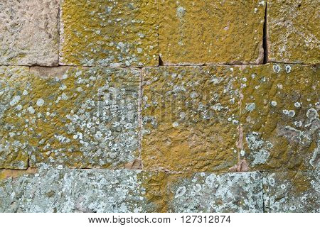Grey stone covered with dashes of green lichen