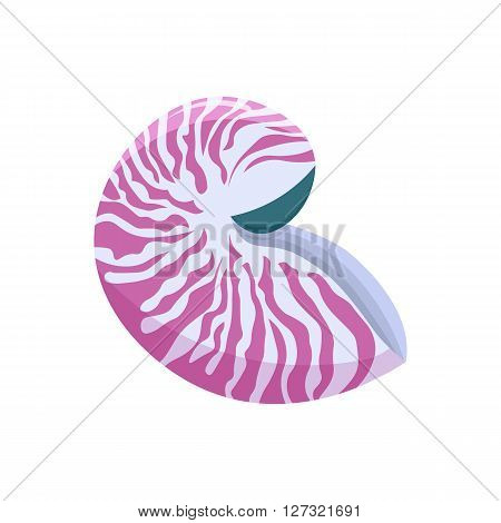 sea shell - nautilus vector illustration isolated on white background