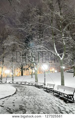 Snowcovered footpath with trees and benches in Riga park by night