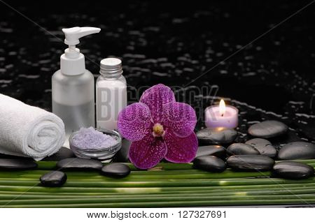 tranquil spa scene- orchid with black stones with candle ,green plant