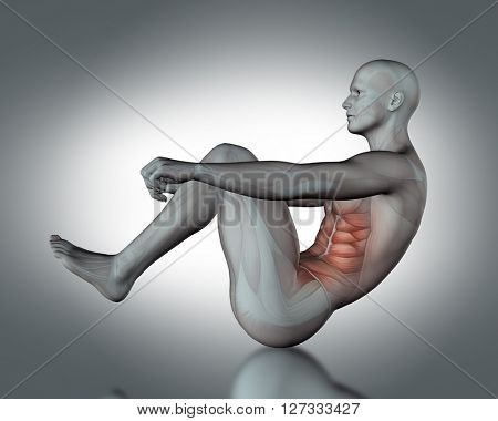 3D render of a medical figure with partial muscle map in sit up position