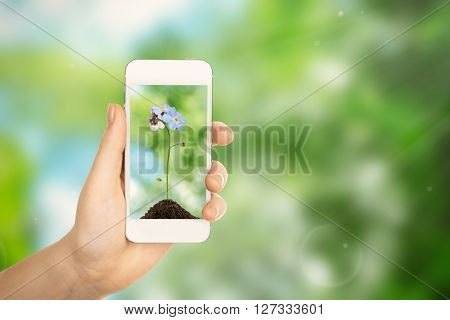 Woman hand holding smartphone with small flower on screen against blur green background