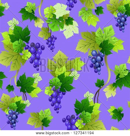 Grapes pattern on purple background. The natural for design banner, ticket, leaflet and so on.