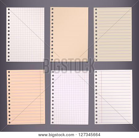 Brown lined and squared notebook paper are stuck on dark background.
