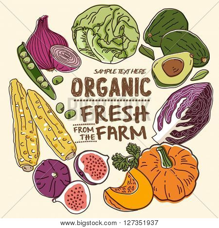 Fresh organic farm vegetables_Vol. 2