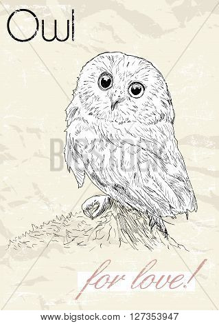 Poster with owl. Vintage style. Vector illustration EPS8