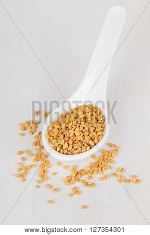 Whole unprocessed fenugreek (Trigonella foenum-graecumcumin) seeds on white spoon on white wooden table