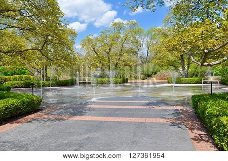 pulsating water fountains in park on a Spring  day
