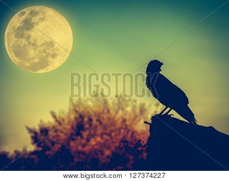 Night Sky With Full Moon, Tree And Silhouette Ofcrow That Can Be Used For Halloween.