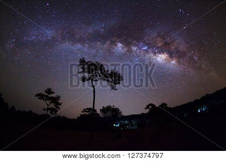 Silhouette Of Tree And Milky Way At Phu Hin Rong Kla National Park,phitsanulok Thailand. Long Exposu