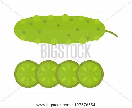 Fresh cucumber cut sliced cooking illustration in modern flat vector style. Cucumber and slices healthy vegetable organic food. Green cucumber fresh vegetarian ripe plant. Dieting cucumber.