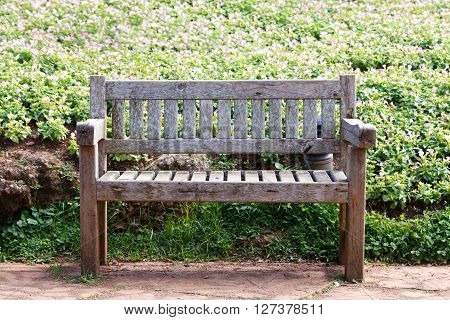 Old Wooden Bench In The Garden