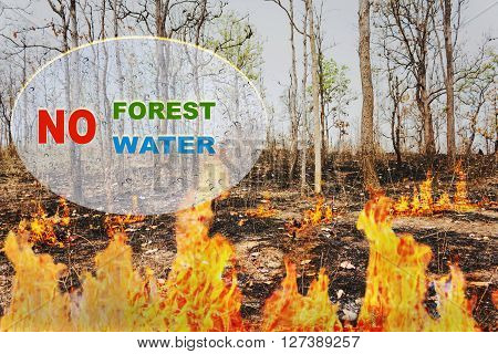 Text No Forest No Water On Burnt Tree Or Wildfire