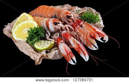 Two Big Raw Langoustines with Lemon Lime and Rosemary on Parchment Paper closeup on Black Wooden background