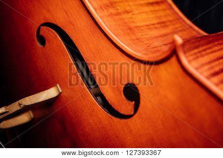 Violin Closeup On Wood