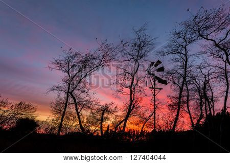 Wind powered water pump with trees behind it and a sunrise sky.