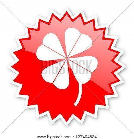 four-leaf clover red tag, sticker, label, star, stamp, banner, advertising, badge, emblem, web icon