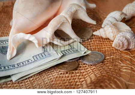 Different sea shells coins and dollars on a wooden table Going into a trip to the sea.