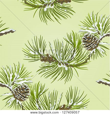Seamless texture Pine branch with snow and pine cone vector illustration