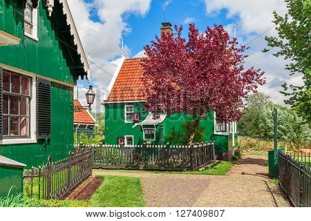 Green wooden houses with red roofs in small village of Zaanse Schans, Netherlands.
