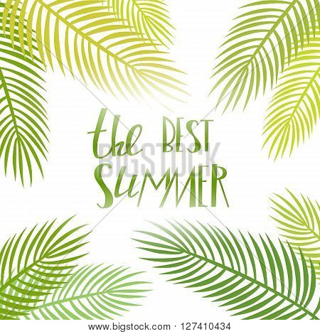 Summer day light. Vector season poster with palm leaf and lettering. Tropical background