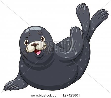 Black seal with happy face illustration