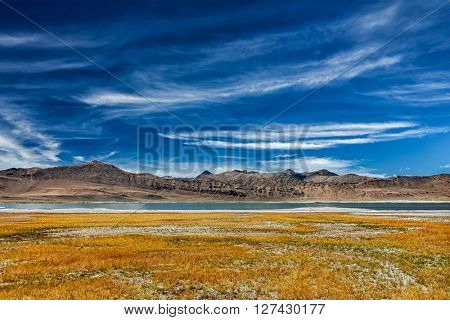 Tso Kar mountain lake in Himalayas. Rapshu,  Ladakh, Jammu and Kashmir, India