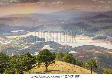 Neighborhood of Dalat Vietnam. Rice fields beautiful landscape.