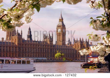 Big Ben On The Thames