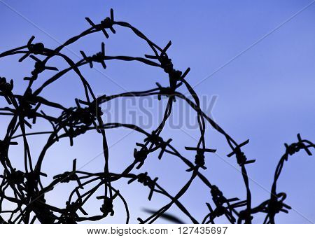 Silhouette of barbed wire against blue sky on background.