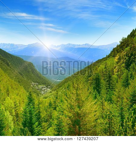 Dawn in the picturesque mountains covered with forests