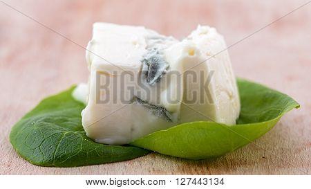 macro gorgonzola on salad leaves on wood