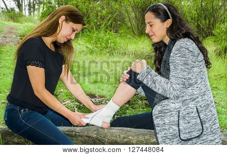 Young woman with injured ankle sitting on fallen tree and getting bandage compression wrap from female friend.