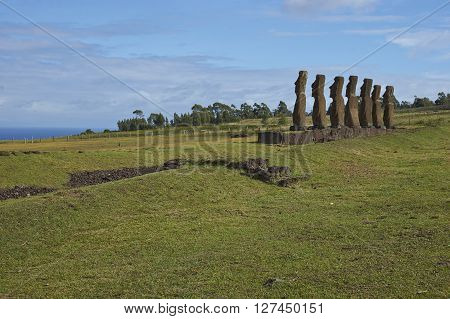 Ahu Kivi. Ancient Moai statues set amongst green fields and facing the sea on Rapa Nui (Easter Island)