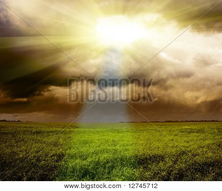 field of flax and dark clouds