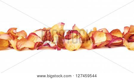 Line made of pink dried rose petals as a romantic composition over white isolated background