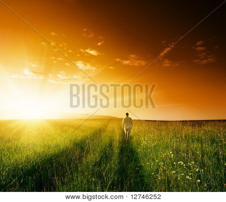 one man and field of summer grass and sunset