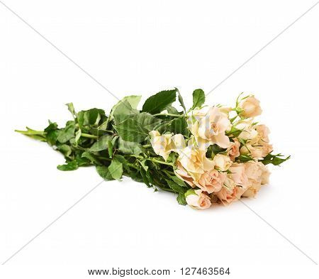 Bouquet of white roses over white isolated background