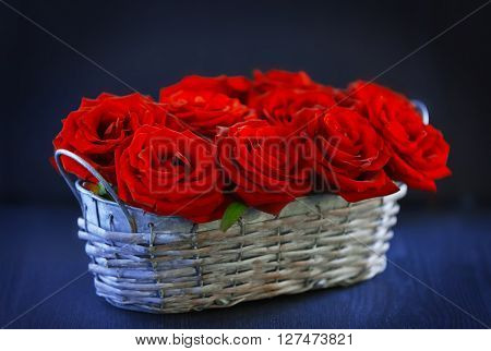 Red roses in basket on dark background