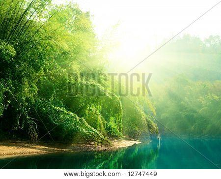 atardecer en la selva de Tailandia