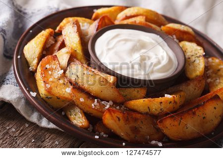 Tasty Potato Wedges With Herbs And Mayonnaise On A Plate Closeup. Horizontal
