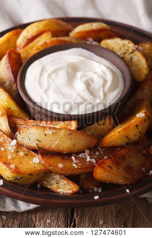 Hot Potato Wedges And Mayonnaise On A Plate Closeup. Vertical