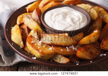 Hot Potato Wedges And Mayonnaise On A Plate Closeup. Horizontal