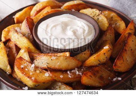 Baked Potato Wedges And Sauce On A Plate Macro. Horizontal