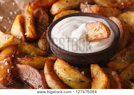 Potato Wedges And Mayonnaise Macro On The Table. Horizontal
