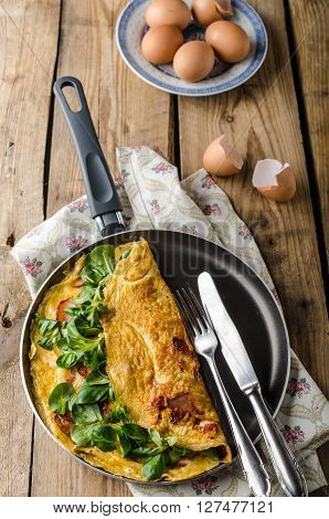 Organic Omelette With Herbs