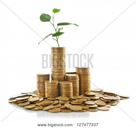 Stacked coins with young plant isolated on white